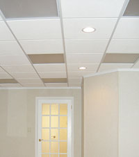 Basement Ceiling Tiles for a project we worked on in Jasper, Indiana and Kentucky