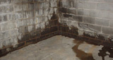 Healthy Spaces is Indiana and Kentucky's experts in wet basement repair