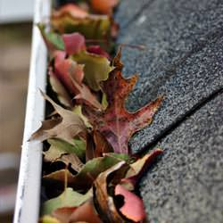 Clogged gutters filled with fall leaves  in Hardinsburg